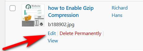 Steps To Rename Existing Media Files In WordPress 7