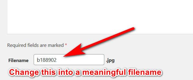 Steps To Rename Existing Media Files In WordPress 8